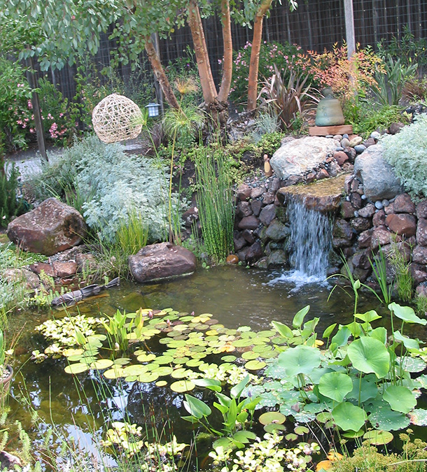 Pond design and construction for santa cruz monterey san for Garden pond design and construction